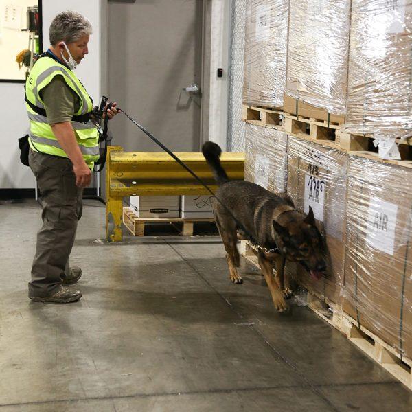 customs-warehousing
